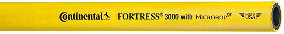 Fortress_3000Y_edited.jpg