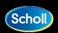 scholl.png