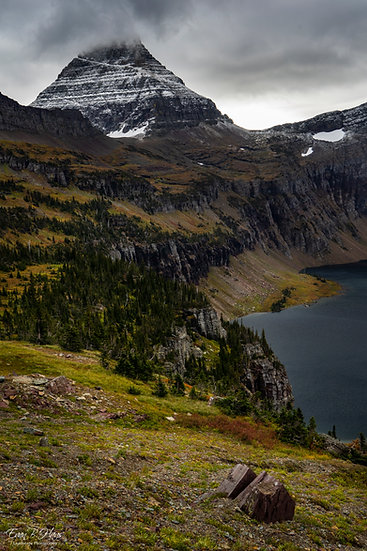 Mt. Reynolds
