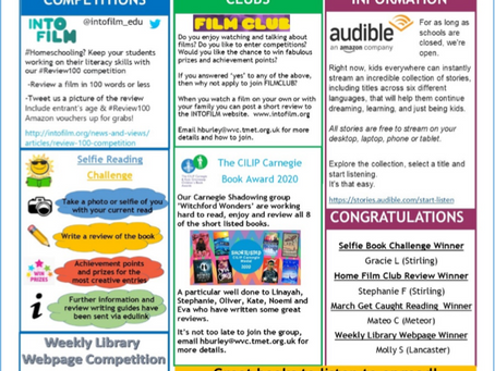 Library Insights: School Library Newsletter