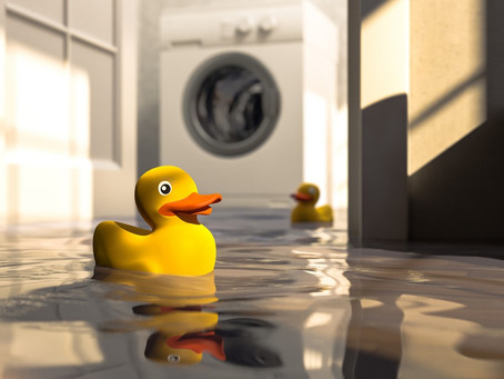 What to Do About That Leaky Basement