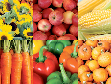 Farmers' markets in Fargo-Moorhead