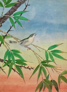 Singvogel auf einem Bambuszweig