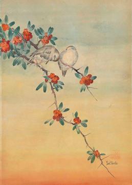 Vogelpärchen auf einem Rötegewächszweig