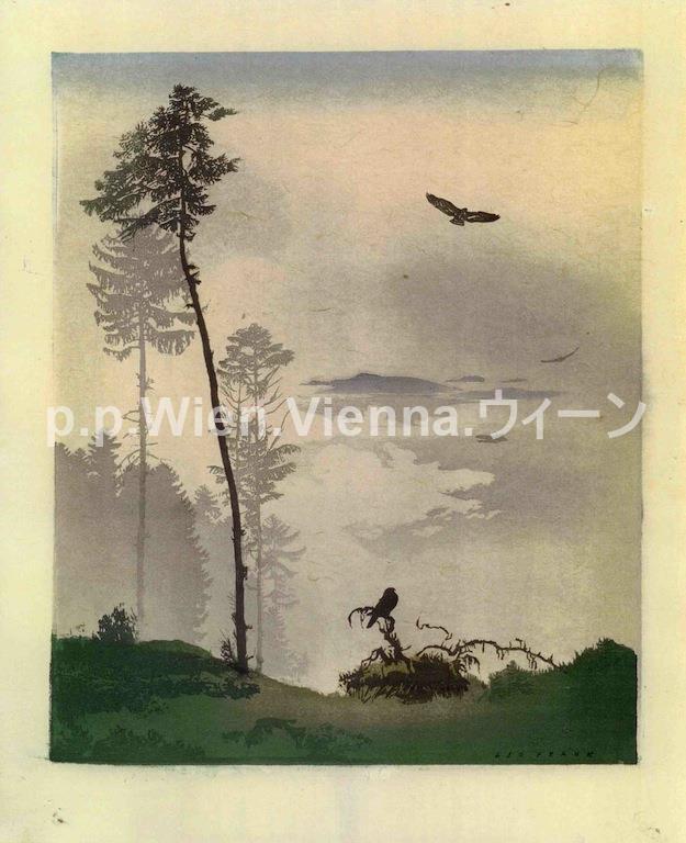 """Raubvögel im Hochwald"""