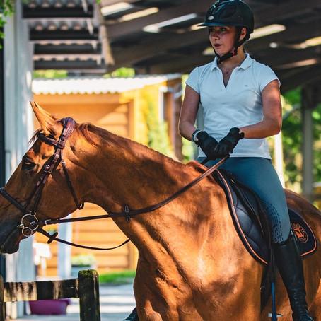 S'assurer de la bonne santé d'un cheval