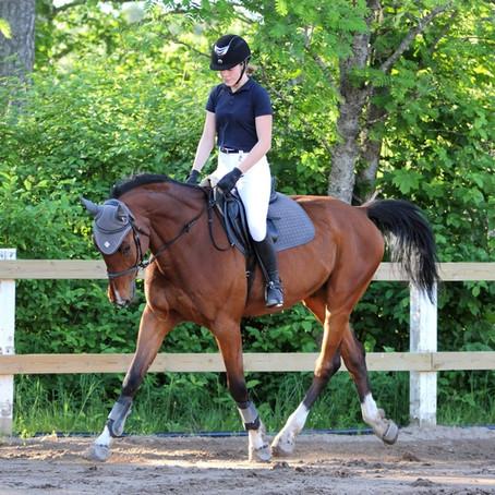 Un contrat de demi-pension sur un cheval