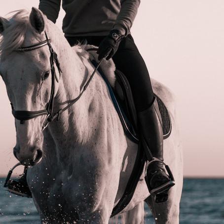 6 idées de cadeau pour cavalières et cavaliers