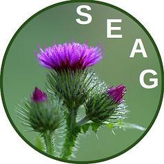 SEAG.jpg