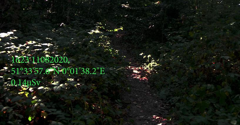 Wanstead Forest Stamped 01.jpg