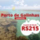 porto de galinhas carnaval site.png