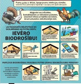 Paziņojums par putnu gripu