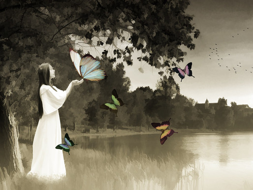 Happiness is like a butterfly!!!