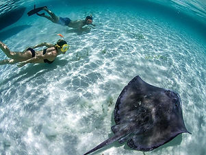 el-cielo-snorkeling-en-cozumel-4.jpg