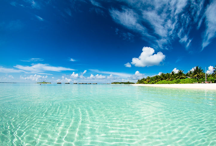 beach-island-maldives-1430677.jpg