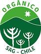 Orgánico SAG-Chile logo color.jpg