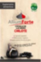 Flyer allium frente.jpg