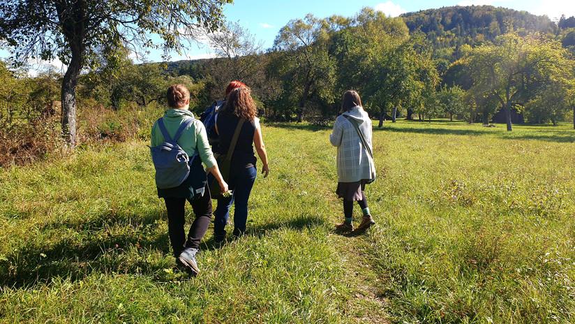 Wanderungen in Kleingruppen