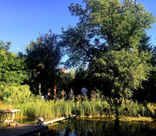 Kräuterführung im eigenen Garten