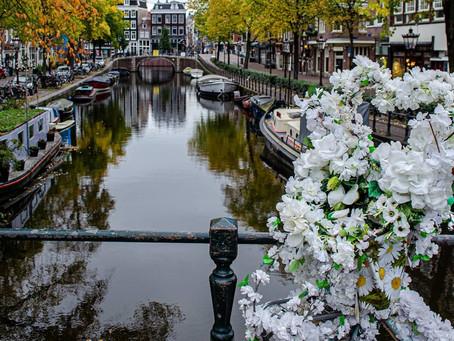 פרחי האופניים בעיר אמסטרדם -   היום : יום האופניים הבינלאומי
