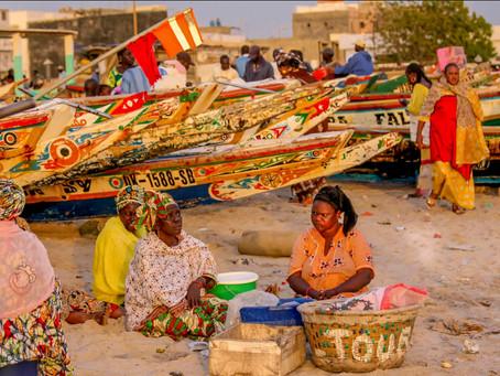 מסע אתנוגראפי למדינה מרתקת באפריקה:  שוק הדגים של  דאקר והדייגים של סנגל ( חלק ג')