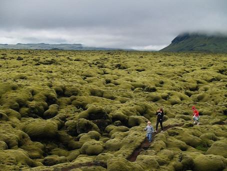 הסיפור המעניין של שדה אלדרון באיסלנד