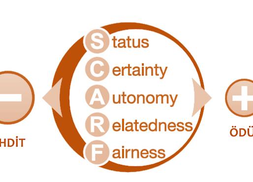 SCARF Bilen Yöneticiler Fark Yaratıyor!