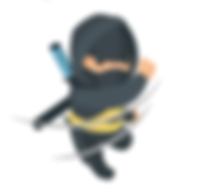 little ninja.png