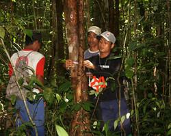 Participatory carbon monitoring