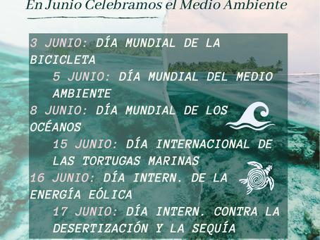 Junio Medioambiental