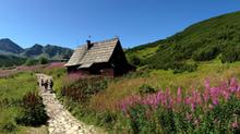 Tatry - obóz młodzieżowy - 7 dni