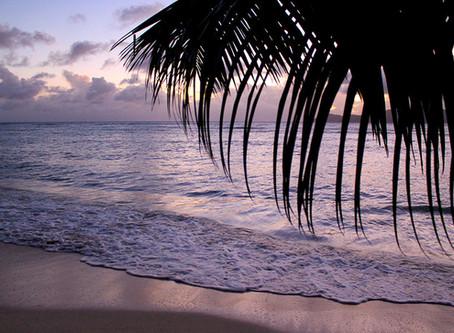 Big Pictures: Die 5 schönsten Urlaubsfotos von den Seychellen