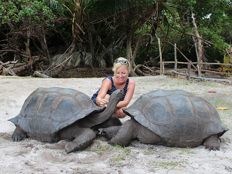 Meine Reisetipps für die Seychellen