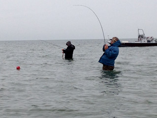 Good Catches in Bad Weather