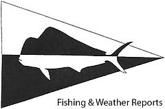 Texas saltwater fishing reports