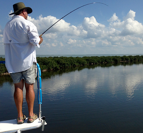 Sight Casting to Redfish