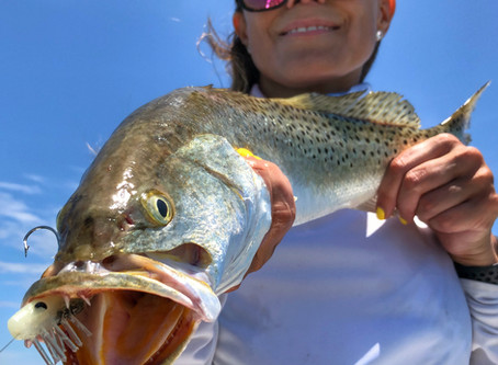 Summer Fishing Off to Hot Start in Lower Laguna Madre