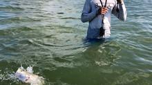 Waist Deep Wading Pays Off