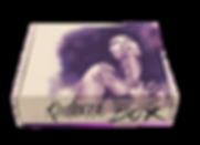 Kadence Box Web Mockup.png