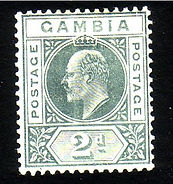 quest199 edVII gambia2d.jpg