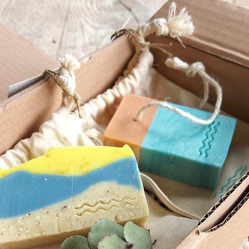 Combo Sea Box