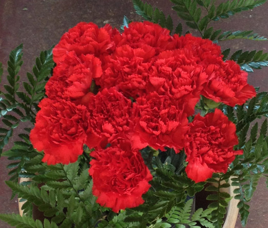 Solid Red Bouquet