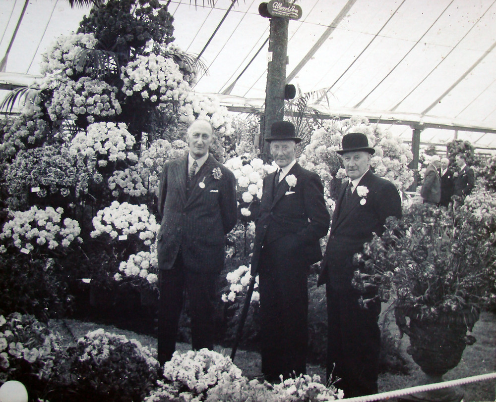 The original founders of Allwoods nursery, Montagu, Edward & George Allwood