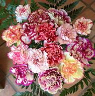 Fresh Fancy Bouquet