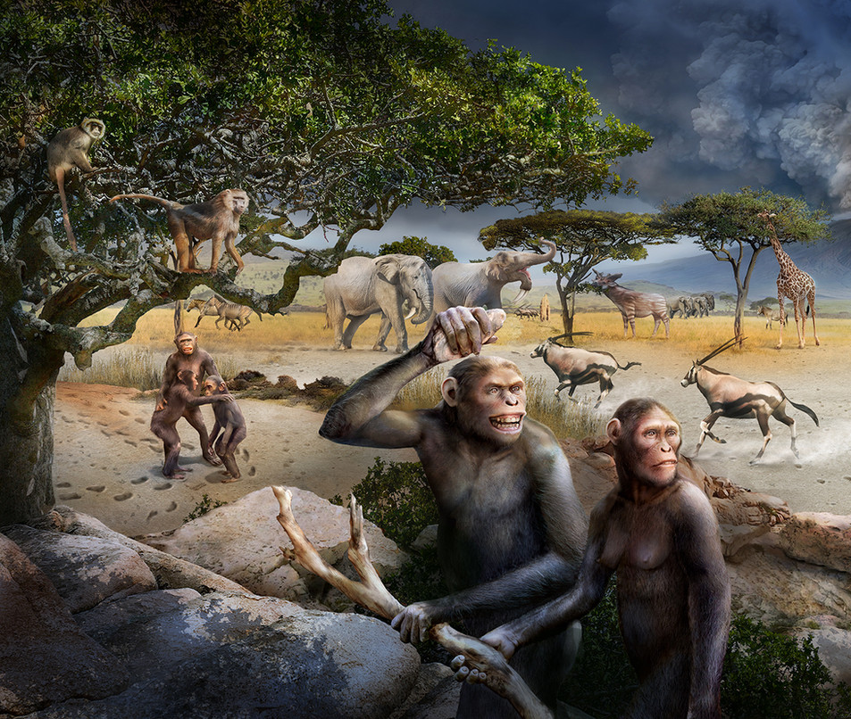 left page - australopitecus afarensis