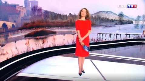 TOUTENGROS SUR TF1 AU JT DE 13H
