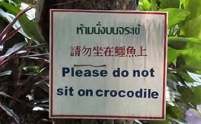 Lost in Translation?