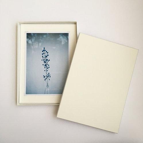 Print in Box Ⅱ