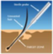 EOS needle probe.jpg