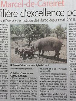 article midi libre unefiliere d'excellence Michel Delafoy